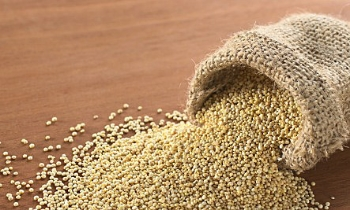 Photo from  http://www.huffingtonpost.ca/diana-herrington/7-benefits-of-quinoa_b_3363619.html