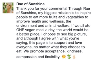 Ashley Wood from www.raeofsunshinelife.com on her Facebook page voicing her goals via Rae of Sunshine.