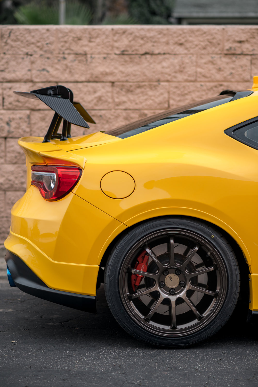 YoungFRS-9.jpg