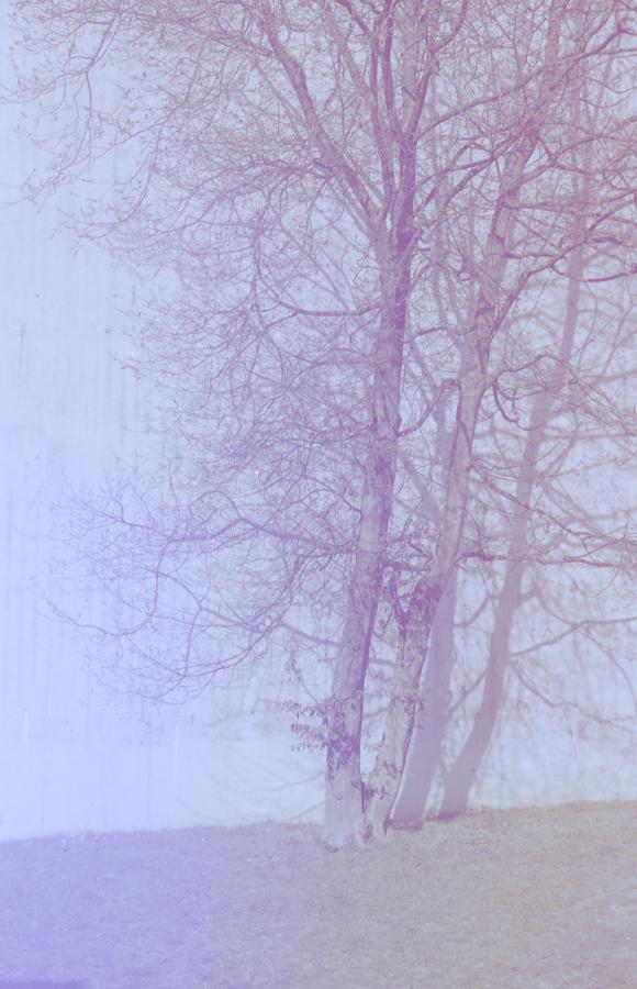 aislamiento-4.jpg