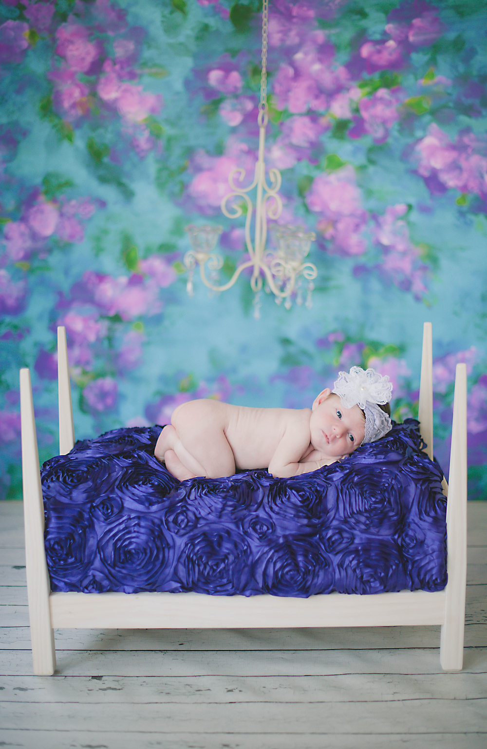 Ann Arbor Michigan Newborn Photographer Photos by Miss Ann.jpg