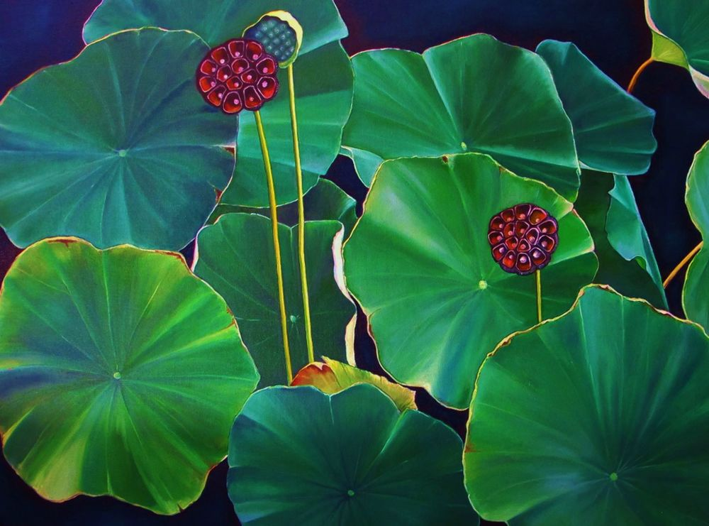 Nelumbo Nucifera , 2015 Oil on canvas, 24 x 36 inches