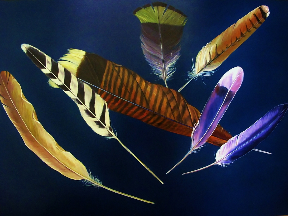 Flying Feathers , 2014 Oil on canvas, 36 x 48 inches