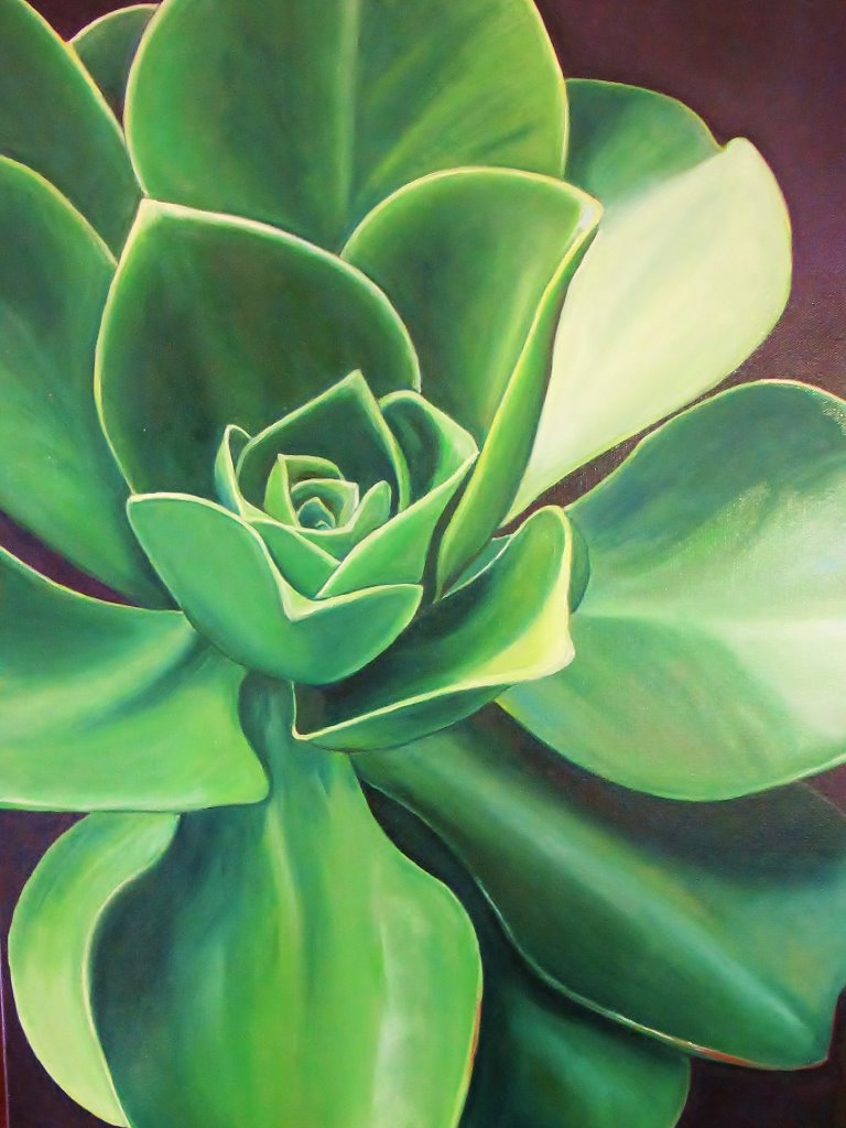 Aeonium , 2014 Oil on canvas, 24 x 18 inches