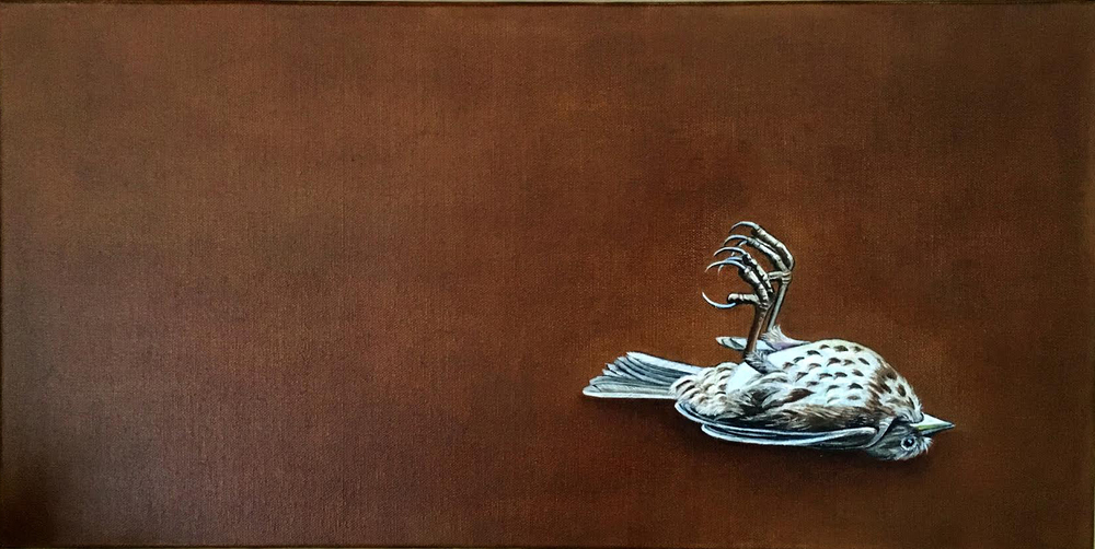 In the Blink of an Eye , 2015 Oil on canvas, 12 x 24 inches