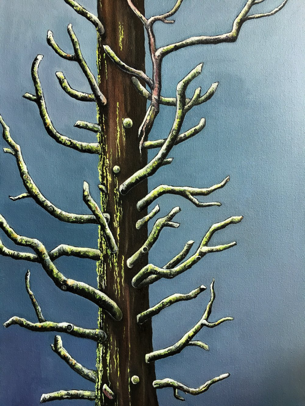 Winter Tree , 2017 Oil on canvas, 24 x 18 inches