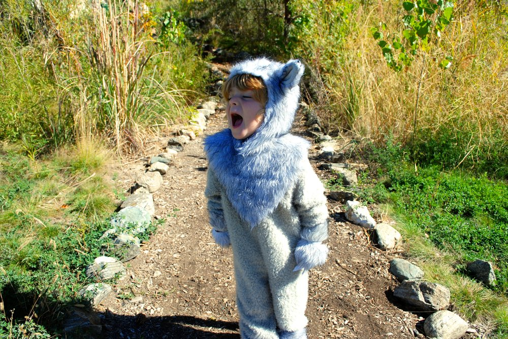Lot801 kids halloween costume ideas big bad wolf