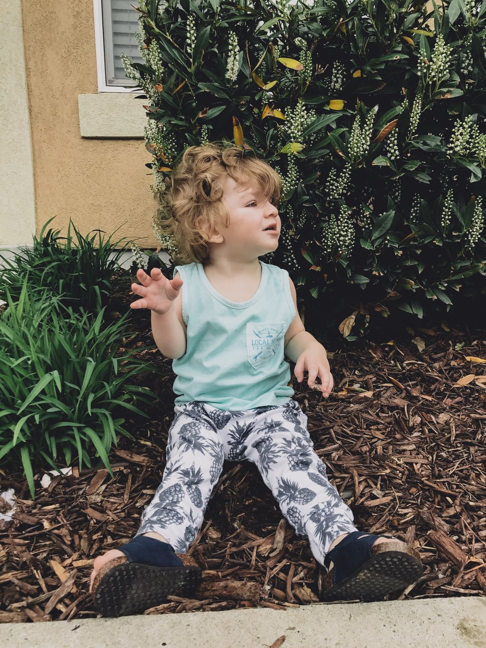 Lot801 baby and toddler pineapple jogger leggings