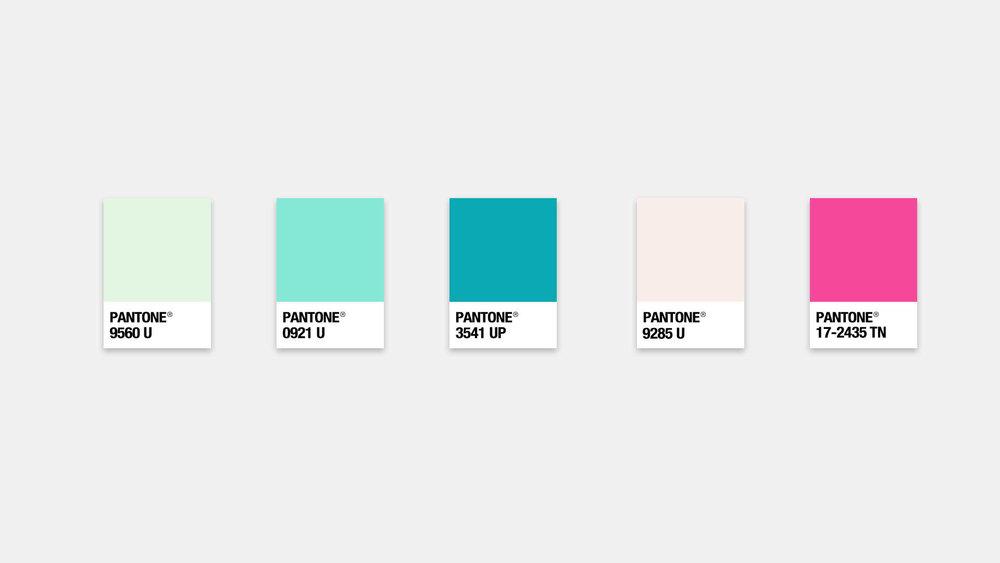 Willow_PantoneColors.jpg Willow and Ivy - Brand Design, Custom Website Design, Social Media Strategy