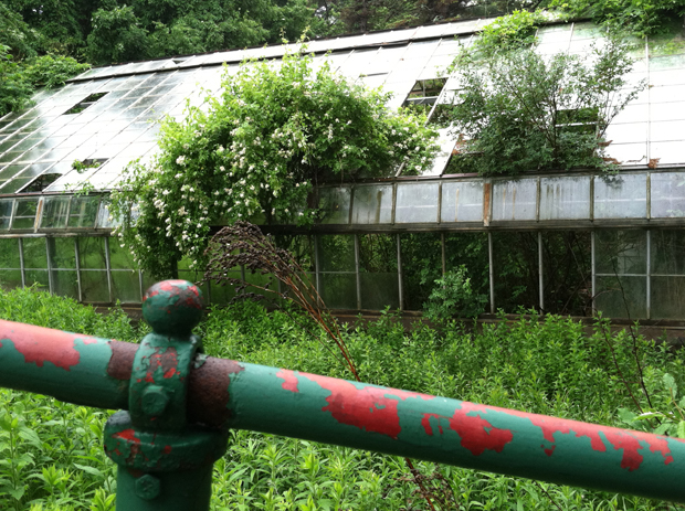 Greenhouse at Grossinger's Hotel, Liberty, NY   2010
