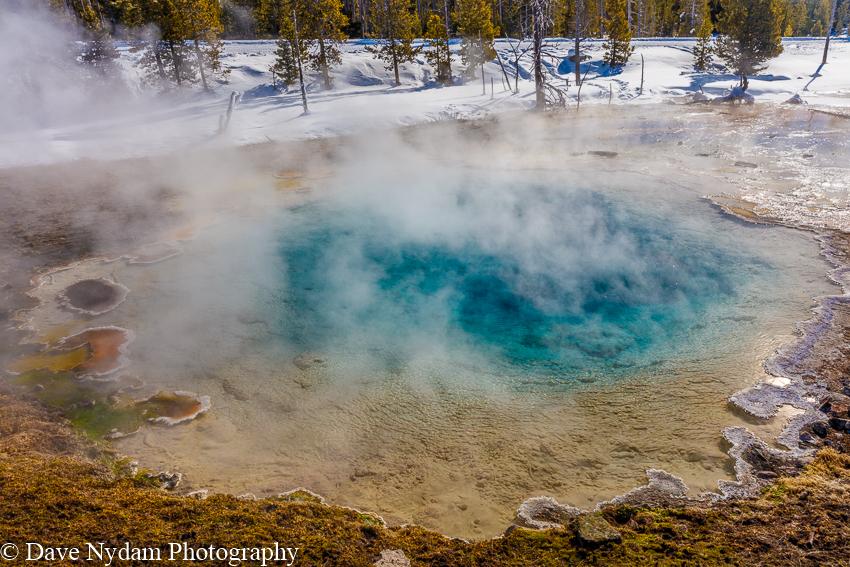 Yellowstone-914.jpg