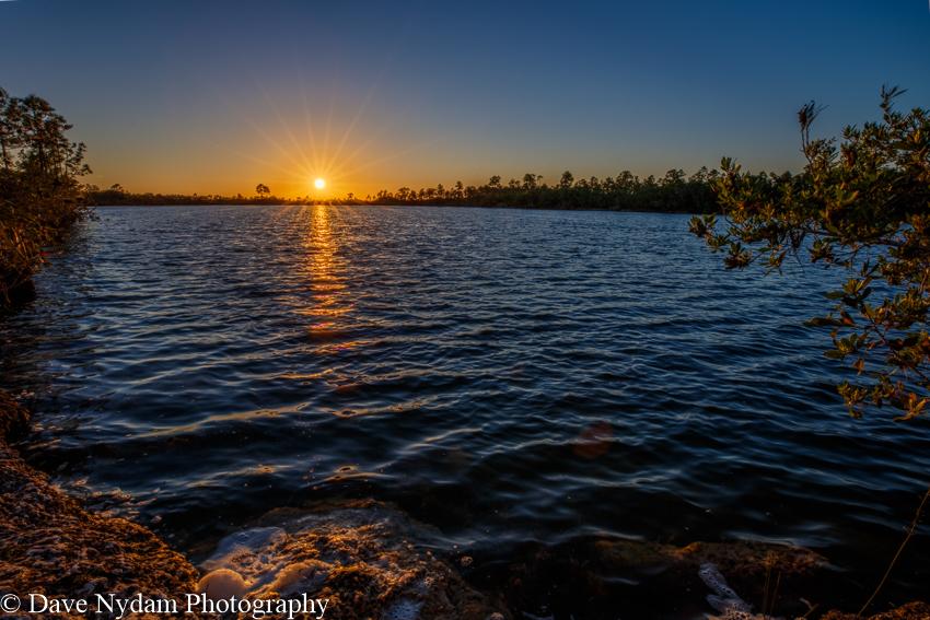Everglades-140.jpg