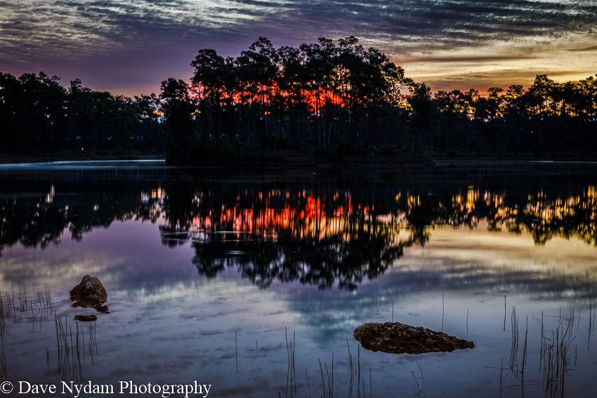 Everglades-171.jpg