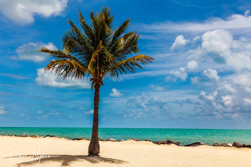 Key West-27.jpg