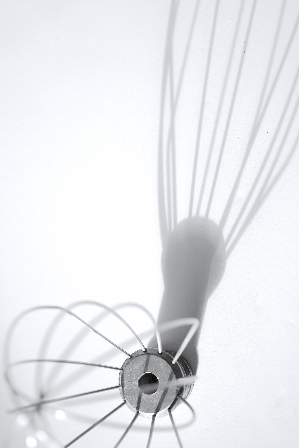 shadow-whisk1.jpg
