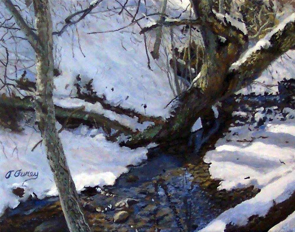 Cook Creek