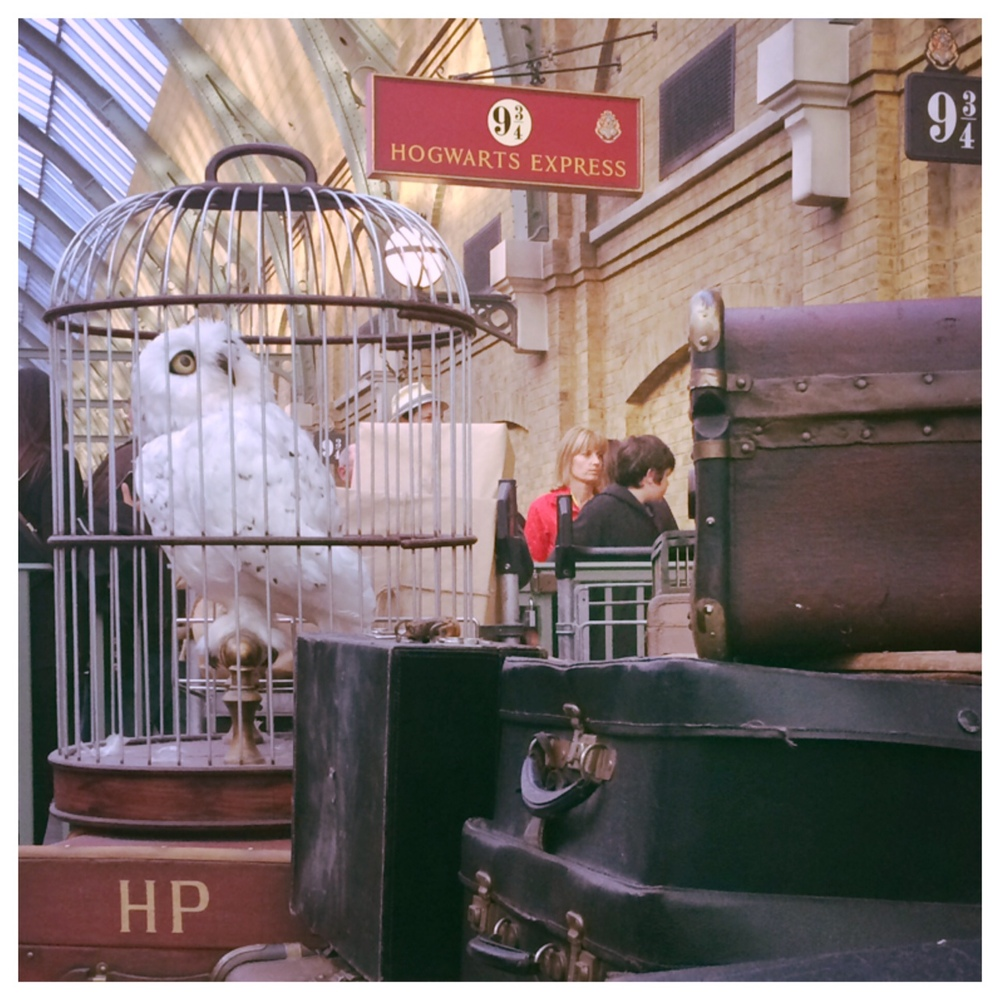 Hedwig & all of Harry Potter's luggage waiting for the Hogwarts Express at 9 3/4. A very cool way to travel between the two parks at Universal if only they had the food trolly for treats.