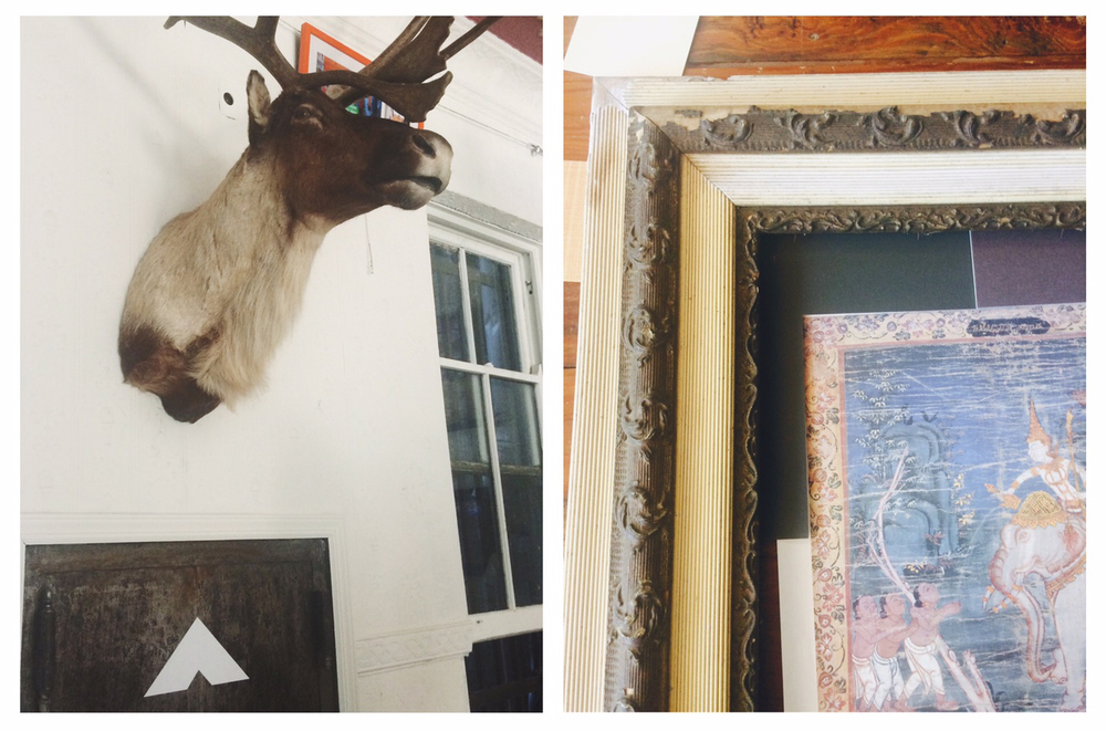 A giant caribou head over-watching all the action including my piece of art to the right that eventually will be up on my kitchen wall!