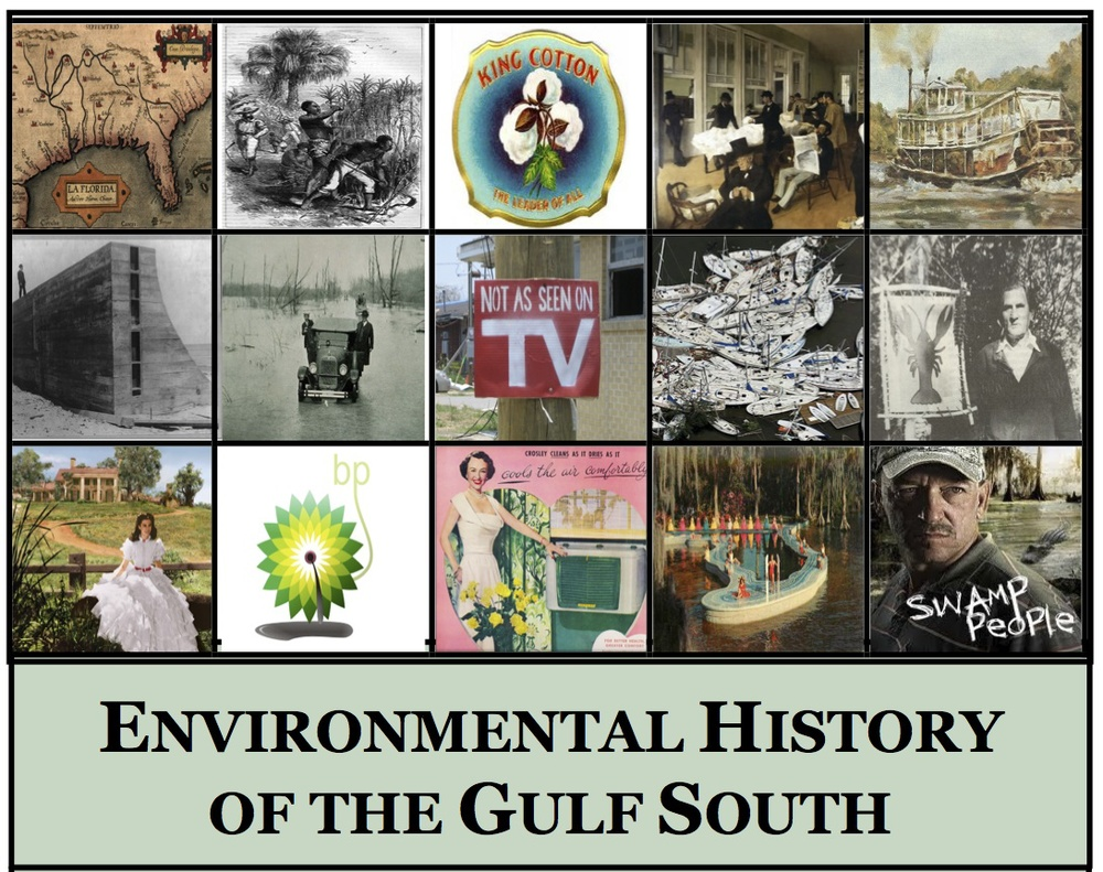 Enviro Histoy of Gulf South Image.jpg