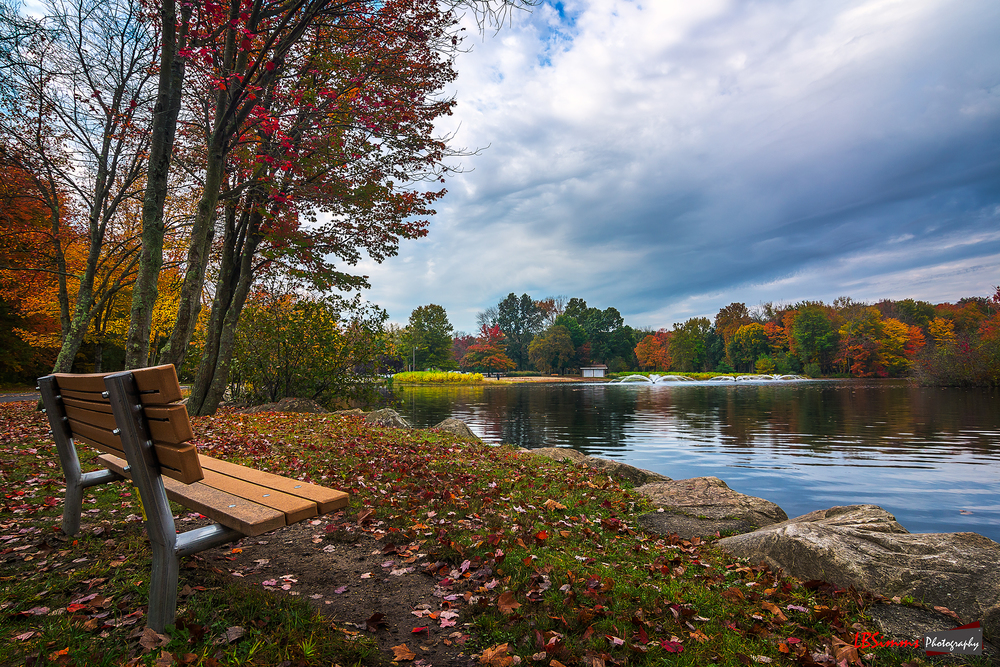 Early Autumn morning at Twins Brooks Park in Trumbull, Connecticut, USA.