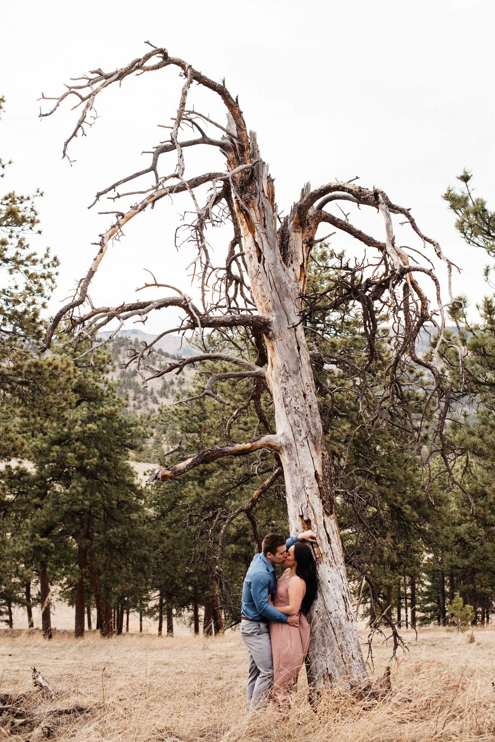 WEB - Colorado Photographer - Debi Rae Photography-8429.JPG