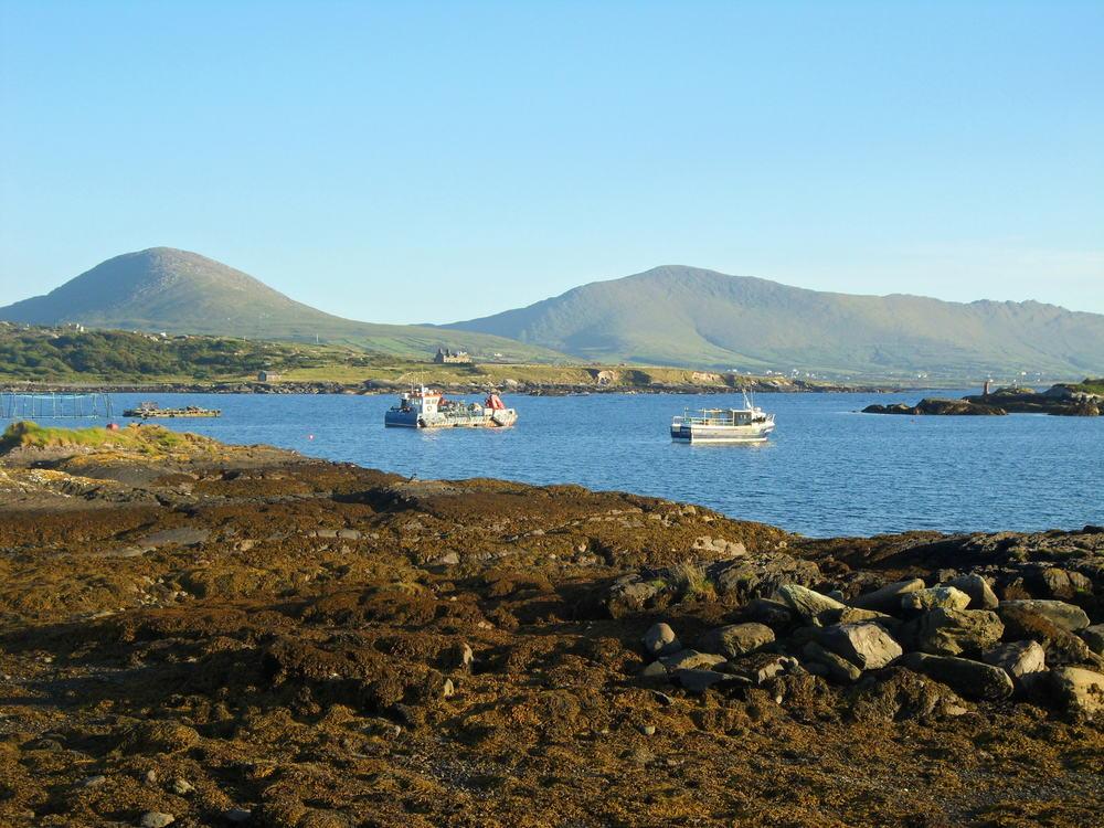 Ballycrovane Harbour.JPG