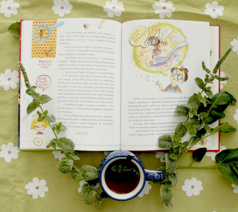 mania mała ogrodniczka maja popielarska