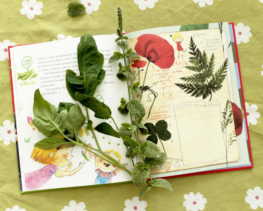 maja popielarska książka dla dzieci