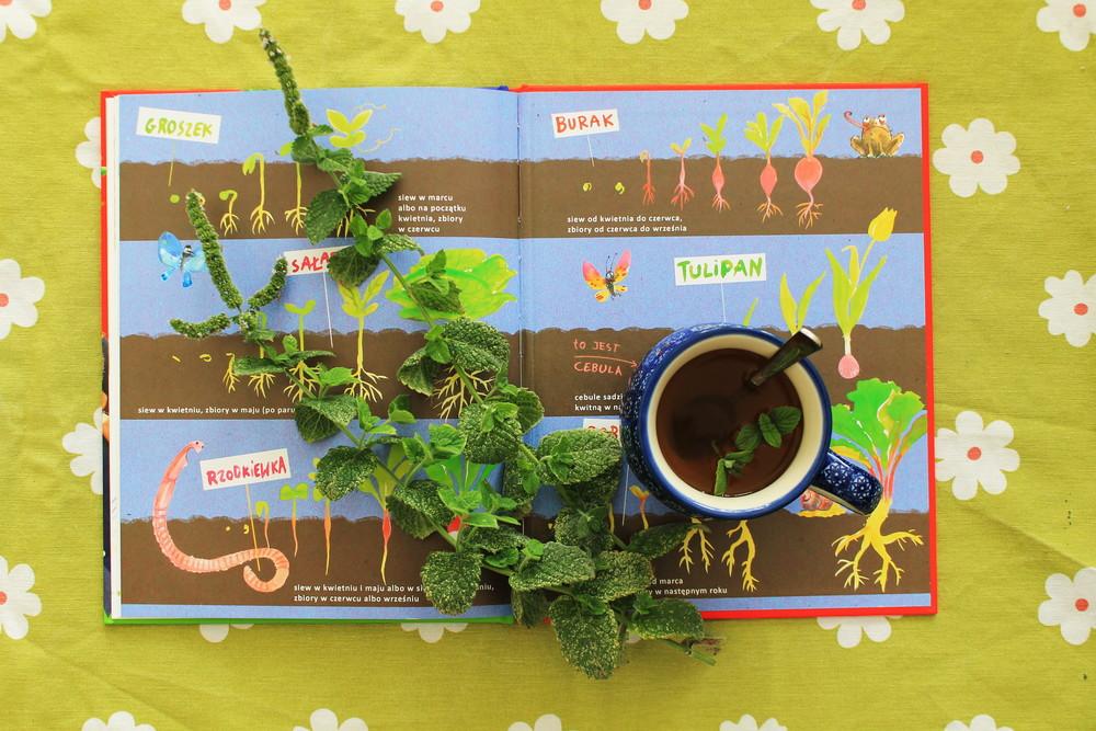 książka dla dzieci ogród