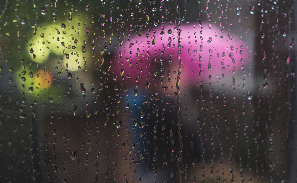 Bus Windows 4.jpg