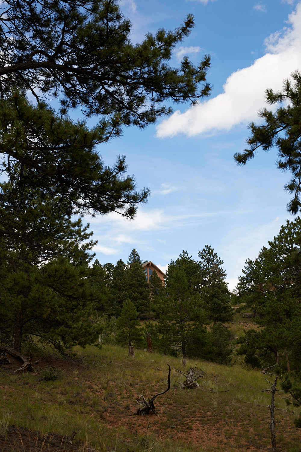 Colorado Cabin 2015 Summer 511.jpg