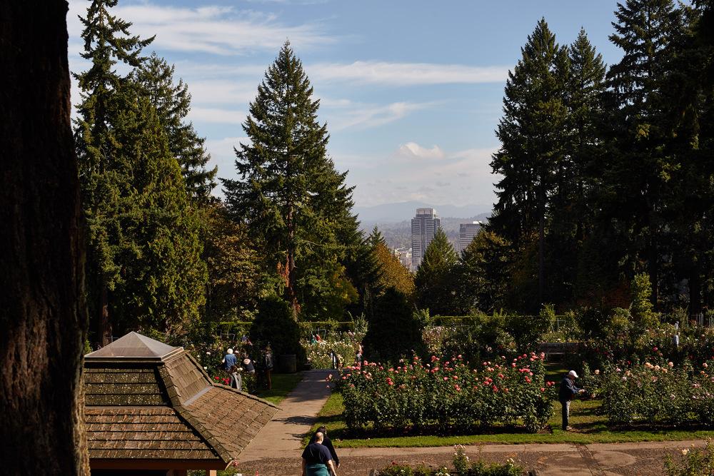 Portland 60.jpg