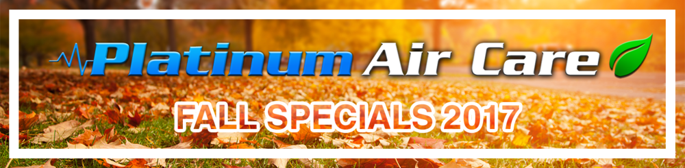 Fall Specials Banner.png