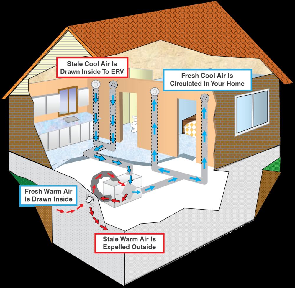 How ERV Works (House Illustration).png