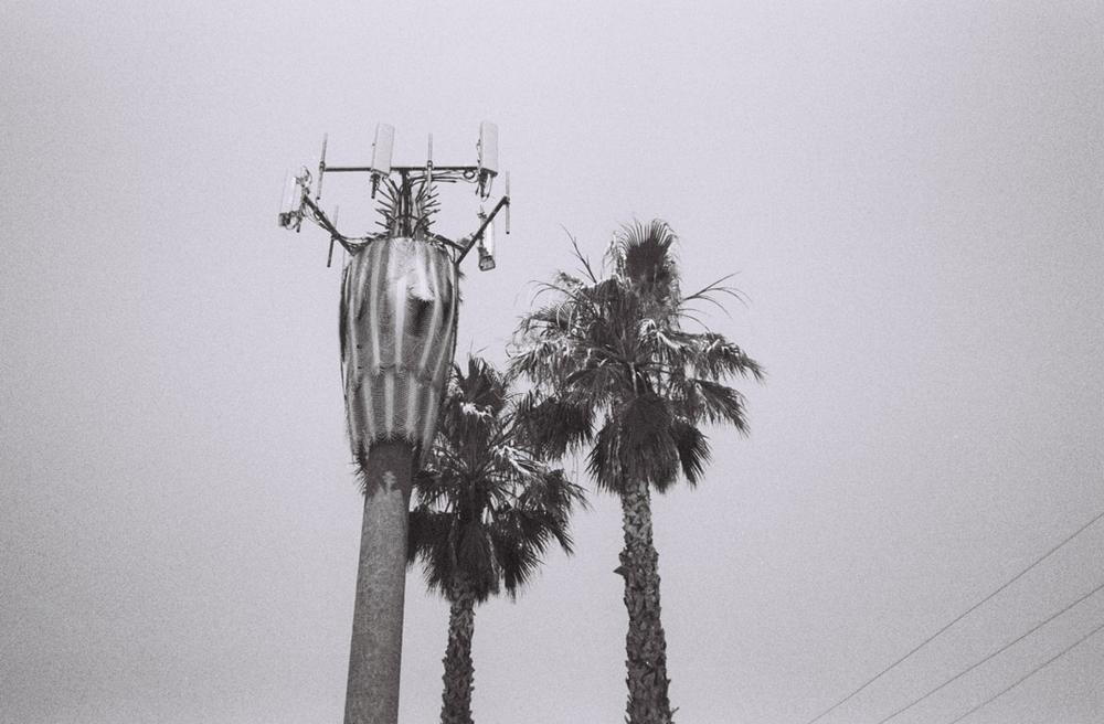 Facsimile, Los Angeles, 2013.