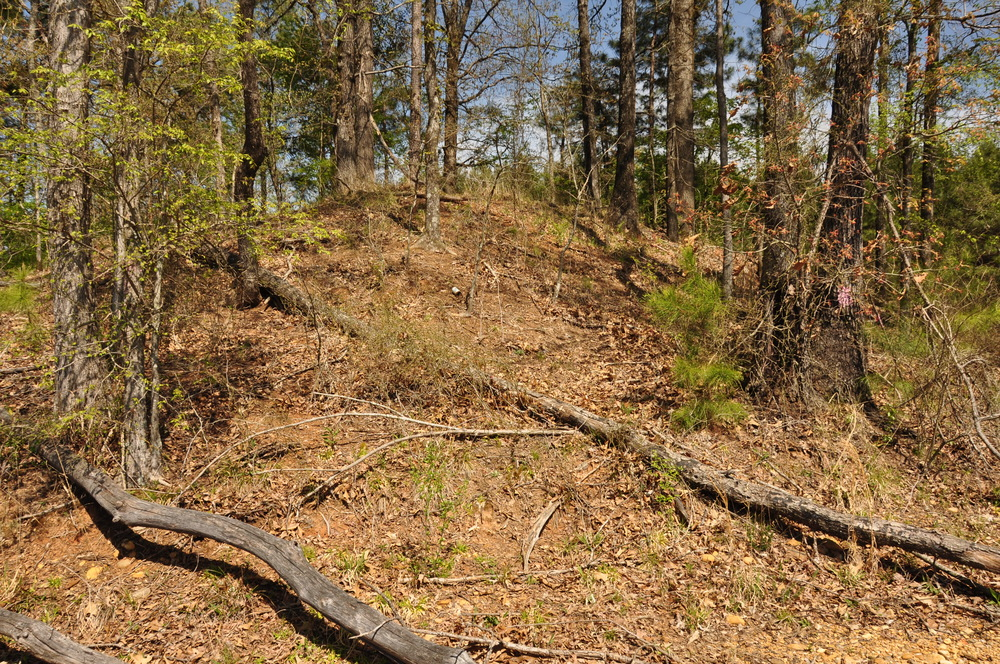 Indian Mound
