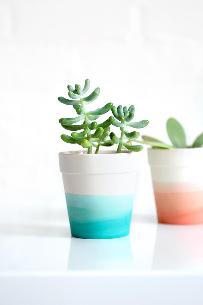 dip-dye-pots