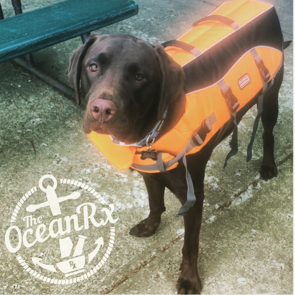 The Ocean Rx's official mascot