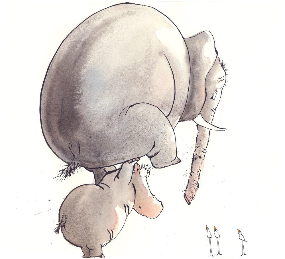 Elephant-on-Hippo.jpg