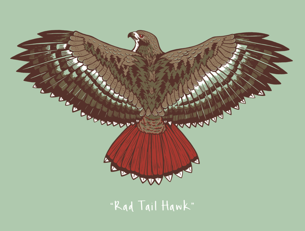 """Rad Tail Hawk"" - Soon available as original dimensional paintings and art prints"