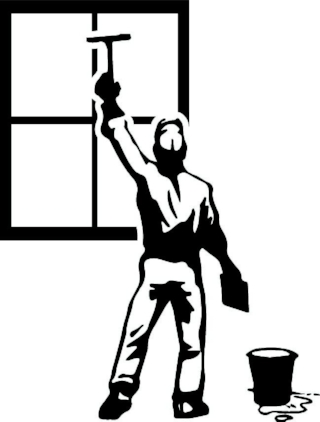Pro Shine Window Washing