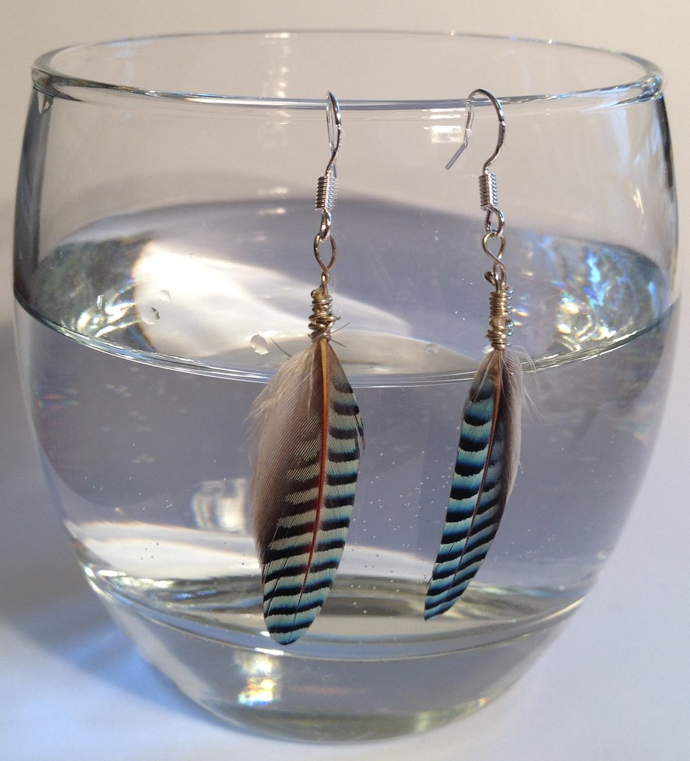 Jay feather and silver earrings