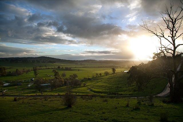 The valley where I grew up, in the Dandenong Ranges. Photo cred @kylepasalskyj