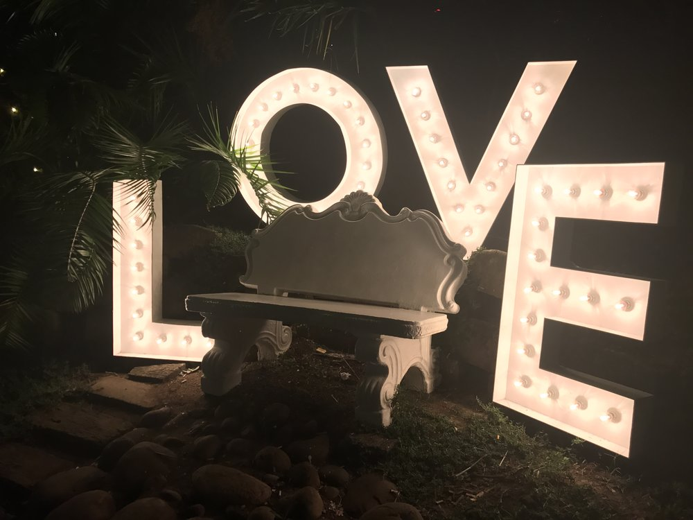 Marquee Letters LOVE photo.jpg