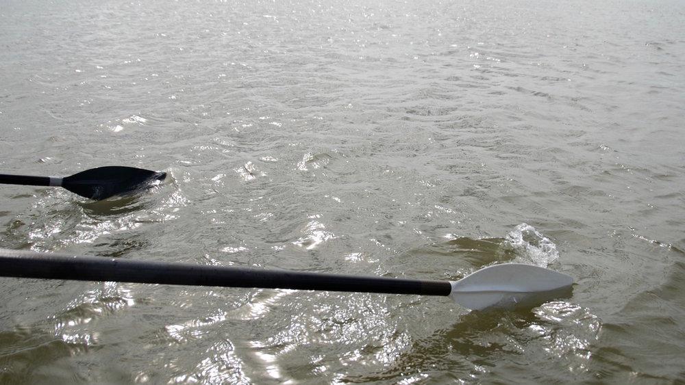 Why I'm rowing .jpg
