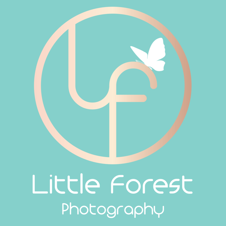 Little Forest Photography