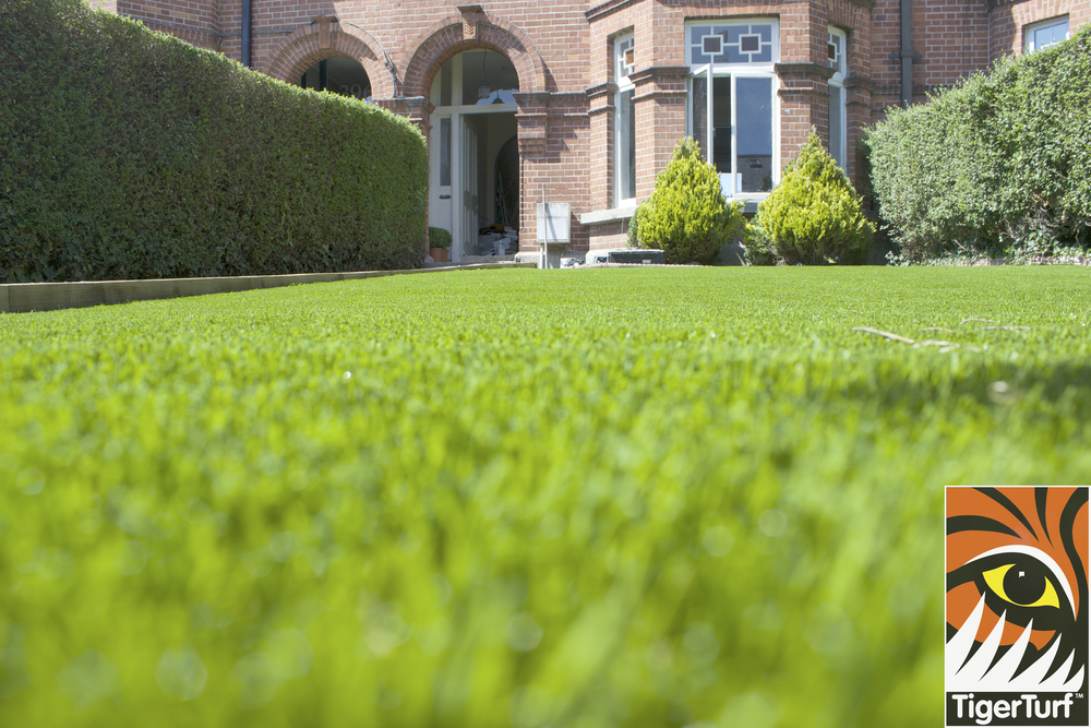 TigerTurf synthetic grass in front garden