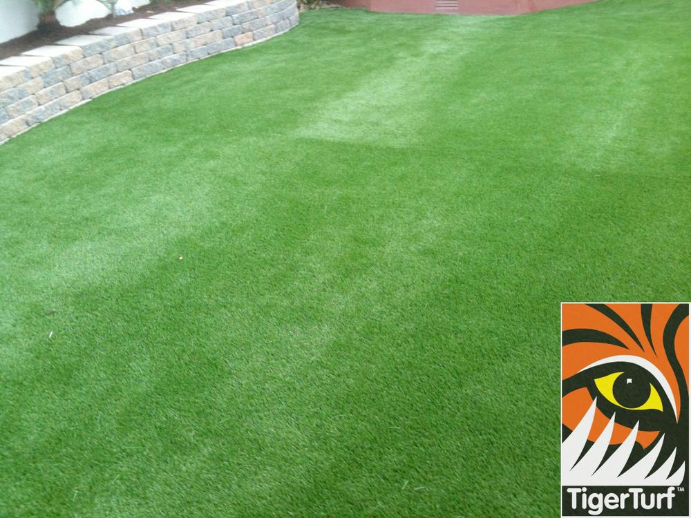 TigerTurf Lawn in suburban garden