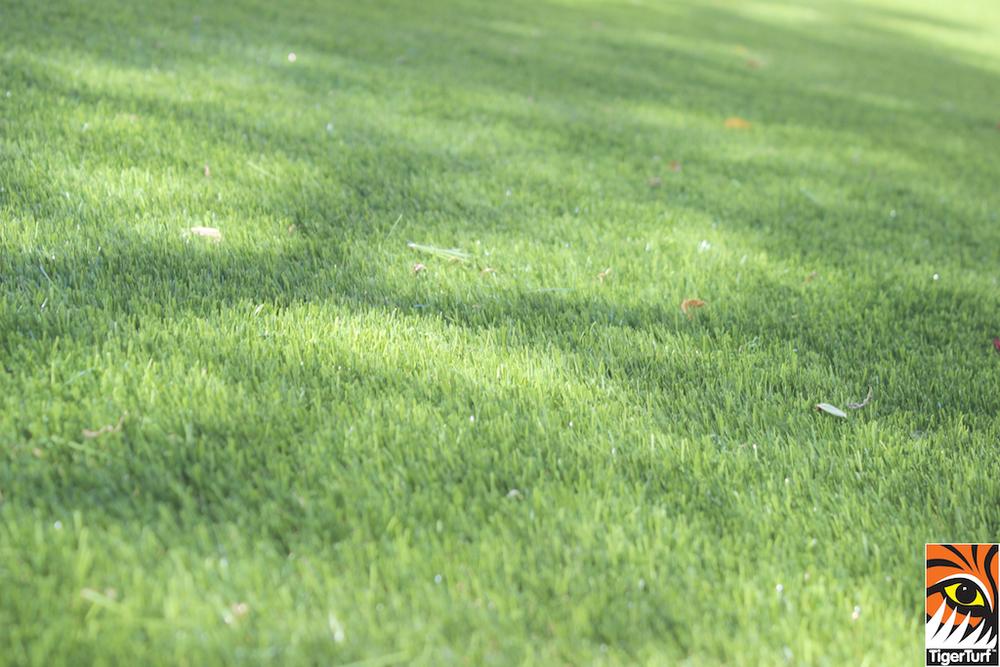 TigerTurf Lawn Dublin