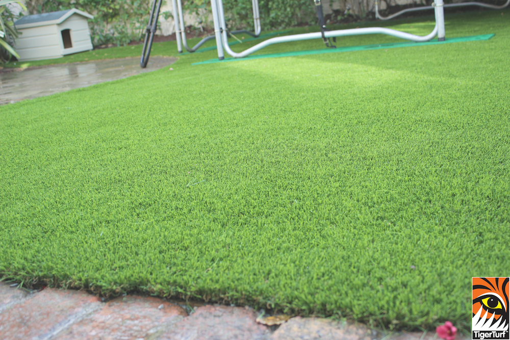 TigerTurf Front Garden Install
